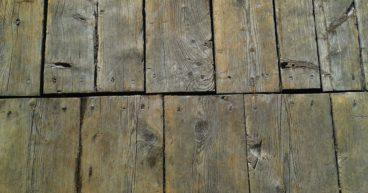 houtworm in vloer